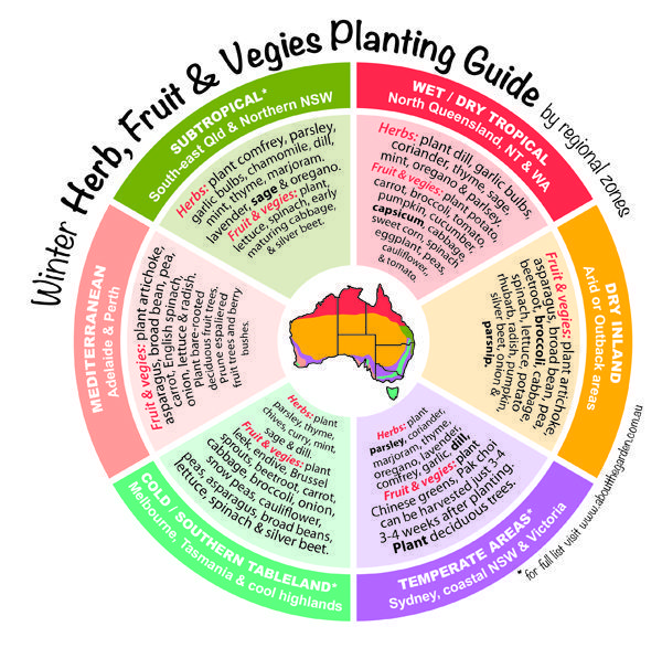 Winter planting guide for Herbs, Fruit & Vegies What will grow in your garden this Winter? Description from pinterest.com. I searched for this on bing.com/images