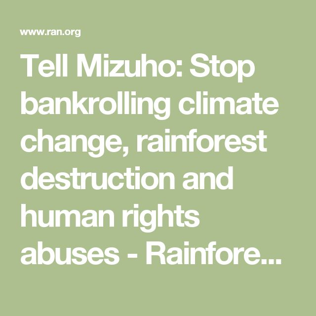 Tell Mizuho: Stop bankrolling climate change, rainforest destruction and human rights abuses - Rainforest Action Network
