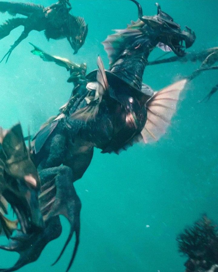 sea dragons aquaman geeky