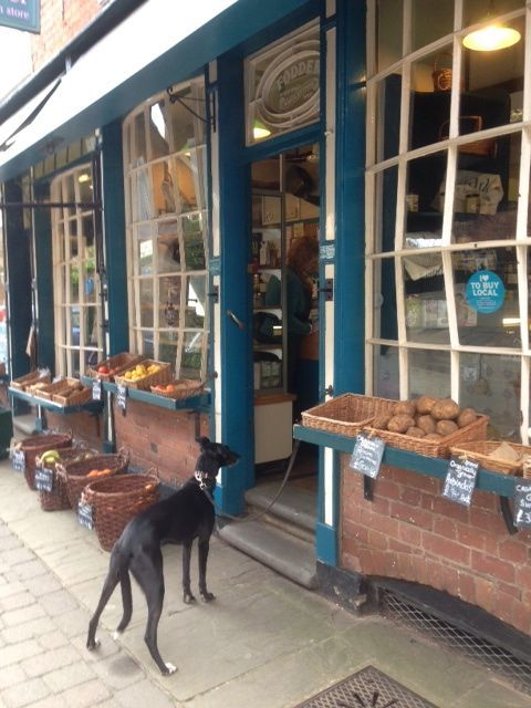 A proper old shop- 'Fodder' in Hereford! Look at the amazing old windows.