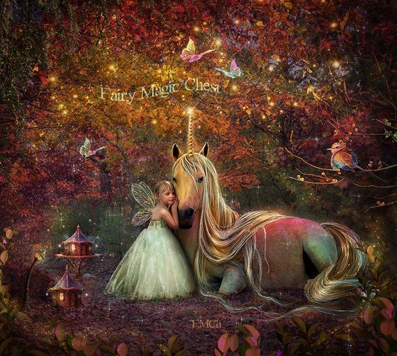 Unicorn Digital Background Rainbow Colors Enchanted Forest With