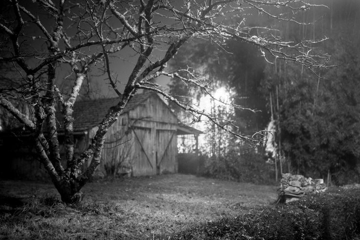 Pascal Tissier - Errances Nocturnes