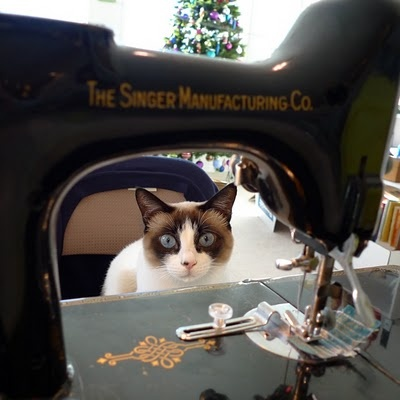 Gorgeous cat and sewing machine!!