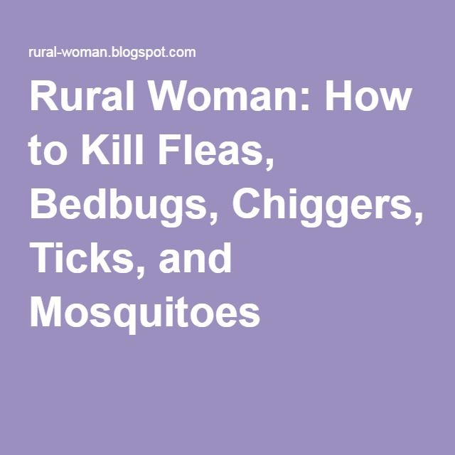 Rural Woman: How to Kill Fleas, Bedbugs, Chiggers, Ticks, and Mosquitoes