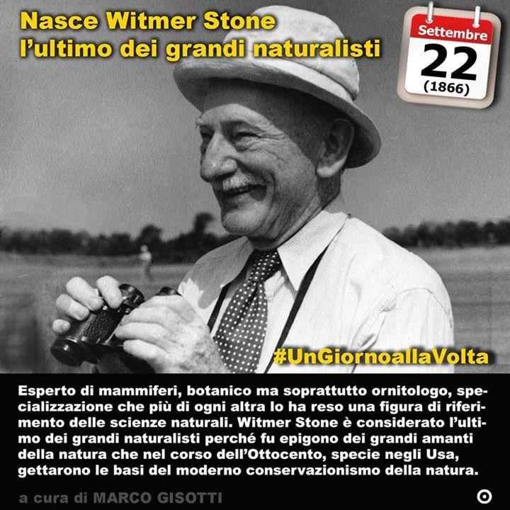 22 settembre 1866: nasce Witmer Stone lultimo dei grandi naturalisti  Immaginate una natura ancora selvaggia. Uccelli che non si sa da dove vengano o dove vadano. Un secolo e mezzo fa ancora così potevano apparire le Americhe. Allora si andava scoprendo davvero un continente nuovo per i bianchi appena entrati nellera industriale. Witmer Stone nato il 22 settembre del 1866 a Filadelfia fu uno dei maggiori naturalisti del suo tempo al punto da guadagnarsi lappellativo di ultimo dei grandi…