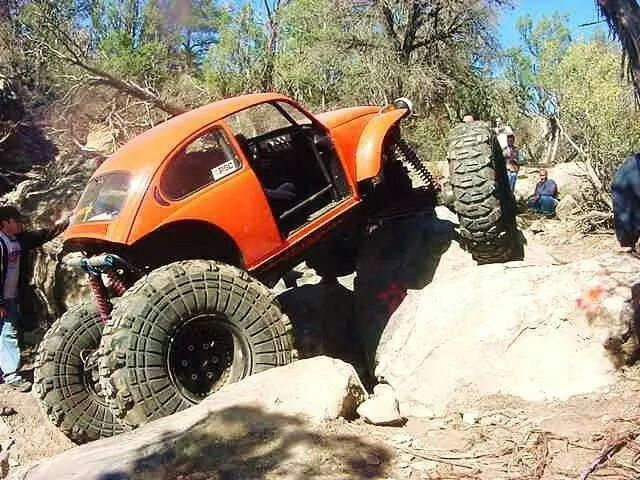 30 Best Big Bugs Images On Pinterest Off Road Offroad