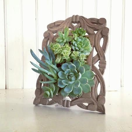 25 best ideas about succulent frame on pinterest succulent wall diy succulent wall planter. Black Bedroom Furniture Sets. Home Design Ideas
