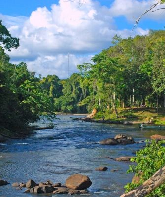 Suriname Reizen | Uw reis of vakantie naar Suriname zoals u dat wilt.