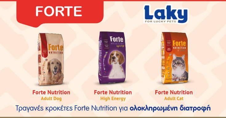 Η σειρά διατροφής Forte Nutrition παράγεται από επιλεγμένα υλικά υψηλής πεπτικότητας και περιέχει όλα εκείνα τα θρεπτικά συστατικά που έχει ανάγκη το κατοικίδιό σας. • Πρωτεΐνες για τη συντήρηση κα…