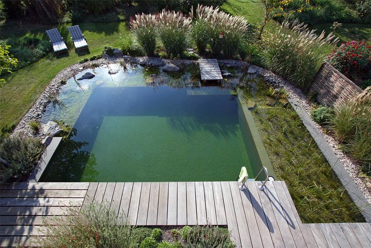 I like the combo here there's a deck to a pool and around the edges of the pool it looks like a pond maybe natural cleansing ?