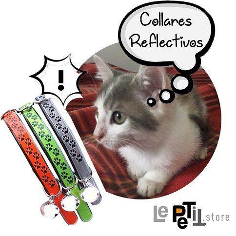 🎁🐱 Encuentra siempre a tu #gato con los collares reflectivos y los sonidos de un cascabel. Cómpralo aquí #LePETitStore 🎄www.lepetit.store🎄  #tiendaderegalos #tiendaonline #tiendas #tiendavirtual #tiendasbonitas #tiendasconencanto #mascotas #mascota #gatos #quieroamigatofeliz #quieroamigato #gatitolindo #gatitos