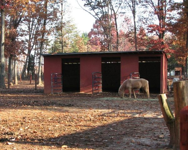 Small 3 Stall Horse Barn Not A Bad Starter