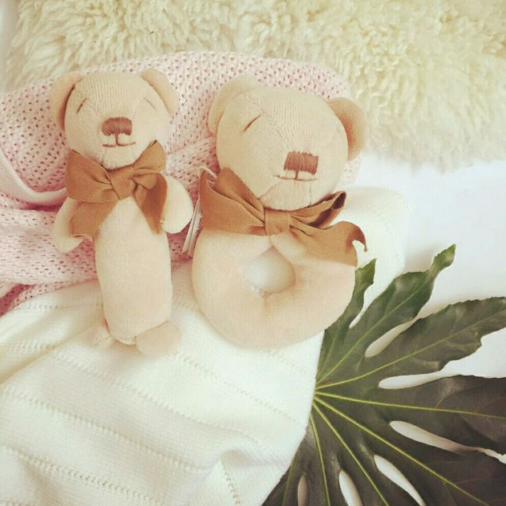 Two Little teddies wanting to play. Organic. Baby toys. The perfect gift www.maudnlil.com.au 🐻🌱❤️🐻🌱