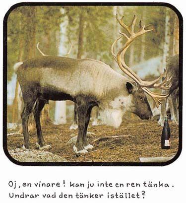 alcohol. elk.