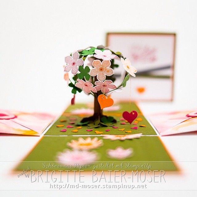 Explosionsbox mit blühendem Bäumchen, passend für den Valentinstag #box #basteln…