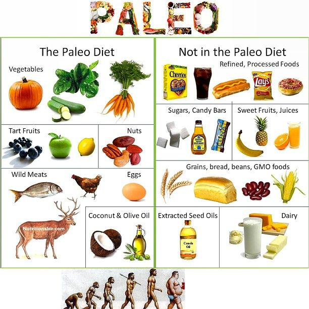 Paleolithic Diet History As Appropriate