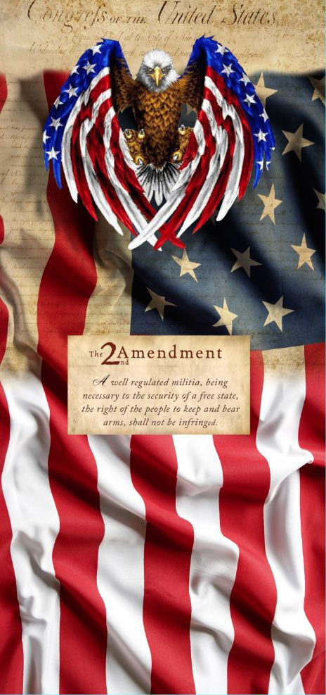 USA Flag with Eagle and 2 amendment – Rm wraps