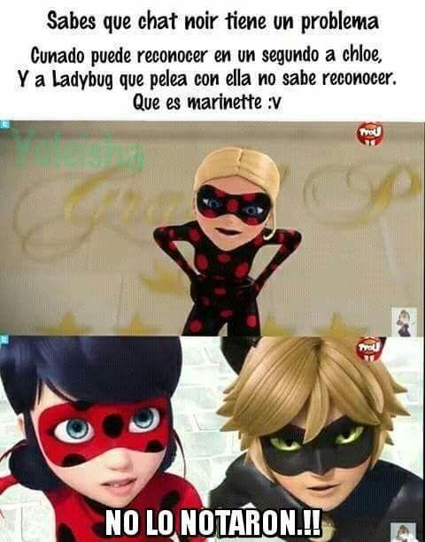 Memes De Miraculous Ladybug! - chat ciego
