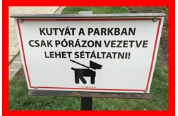 """Drágul a kutyasétáltatás """"napidíja""""?! Budapestiek figyelem! Itt az új rendelet!  #kutya   #hírek   #kutyasétáltatás   #rendelet   #budapest #ferencváros   #kutyabaráthelyek"""