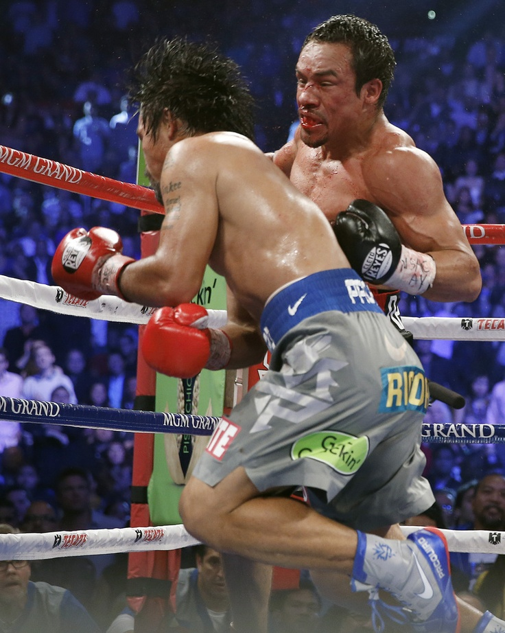 51 best I love Boxing! images on Pinterest Boxer, Boxers and - best of boxing blueprint meaning