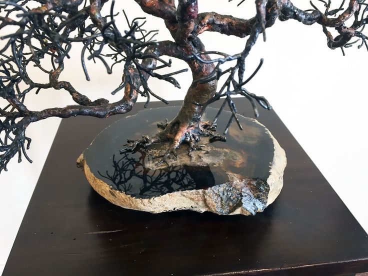 Texas Geode Oak, Detail