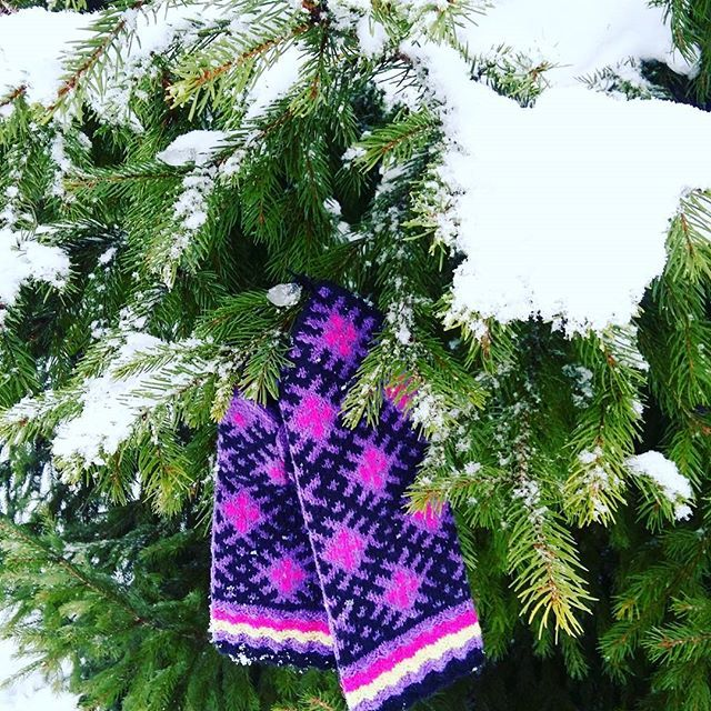 Good morning, Instagram! ✌  Latvia is having a wonderful winter comeback ❄❄❄⛄🎄 A perfect time for enjoyable walks, winter sports and showing- off your Latvian ethnographic mittens 😉🤗🎁 Order these pretty mitts online for a very good price till 19th of Jan.  WWW.TINES.LV…