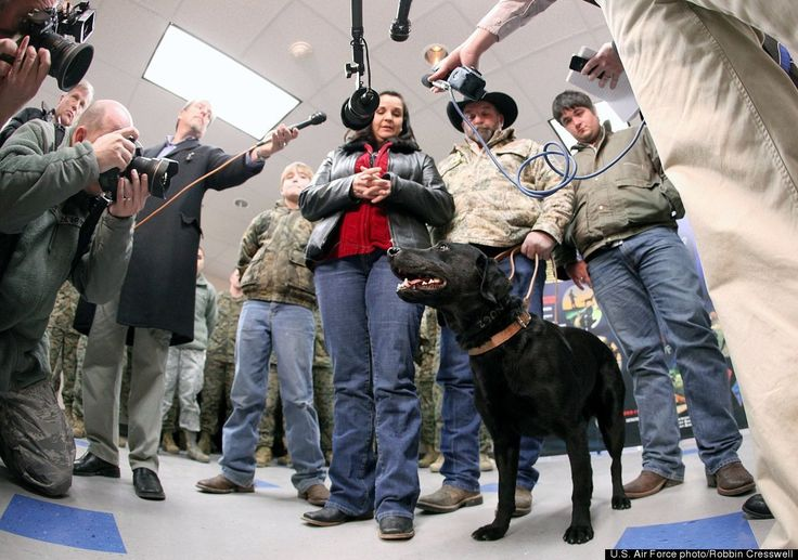 Here's one example where a MWD didn't die - unfortunately, his human handler did - and his family adopted the surviving dog. Kathy Rusk, mother of fallen Marine Pfc. Carlton Rusk, talks with media soon after adopting Eli, a military working dog. The dog was given to Rusk's family during a retirement and adoption ceremony at the Military Working Dog School. Eli and his handler, Pfc. Rusk, were in Afghanistan when the Marine was killed by