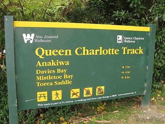 #Queen #Charlotte #Track   #Marlborough #Sounds   #New #Zealand #NZ   #hiking #walking