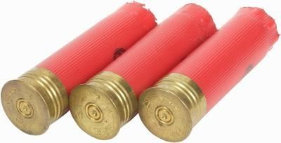 Empty shotgun shell lights. My son loves everything hunting, and this is a great way to recycle empty shells!