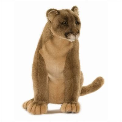 The stuffed puma itself is not an obscurity. Although it was the Professors first expirement with his embalming fluid; the meaning behind this creature is the obscurity. While Professor Jones is dying, Eva hears him tell the minister that Eva will become his sole heir. When everything is said and done after the Professor dies, Eva only has the stuffed puma and nothing else from his home and as being a sole heir it is obscure that the minister did nothing to ensure Eva got what was left for…