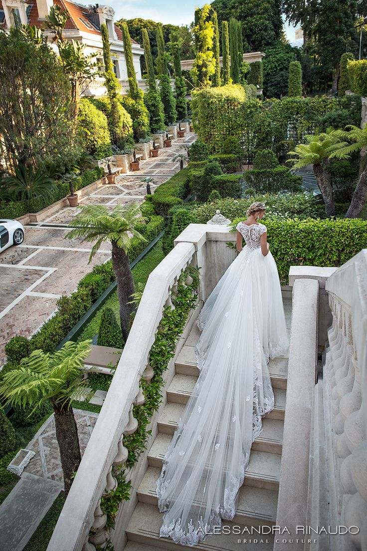 alessandra rinaudo 2017 bridal cap sleeves boat neckline lace embellished bodice romantic sheath wedding dress ball gown a  line train lace back long train (bibi) mv bv