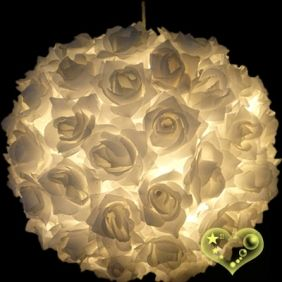 Rose paper lantern..DIY?