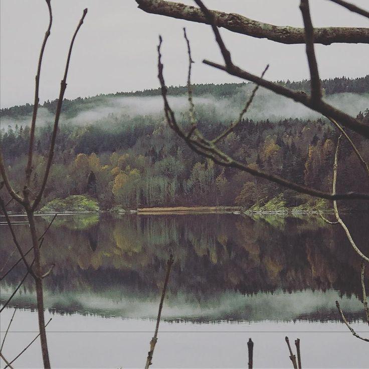 #nesodden #nature #norway