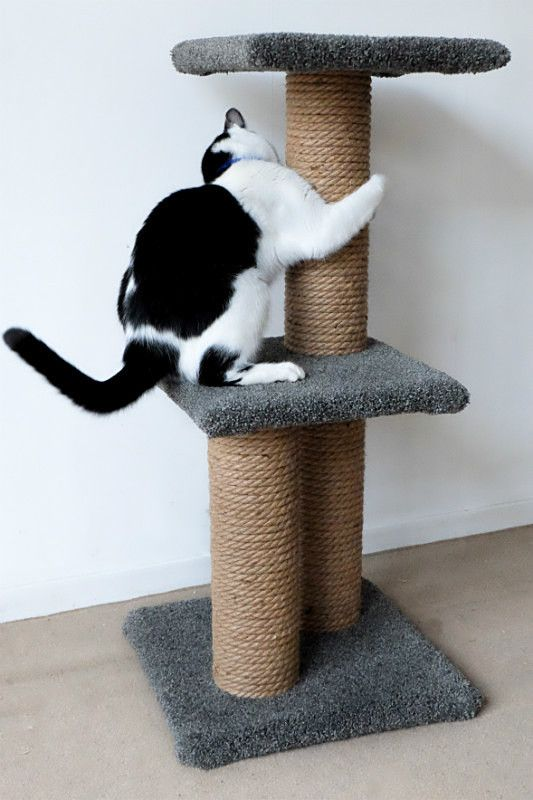 - Cat Small Climbing Frame