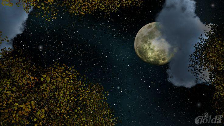 night sky v. II