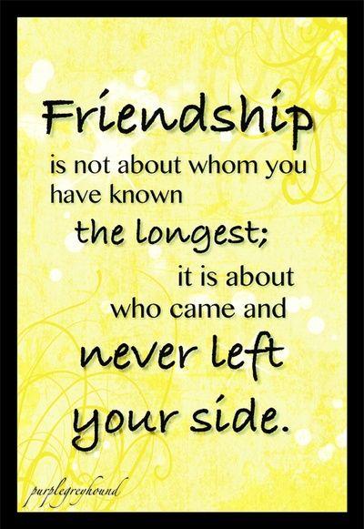 Friendship Quotes Quotes Friendship Quotes Quotes Best
