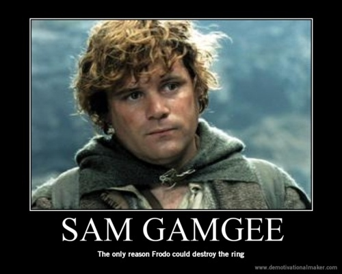 Frodo wouldn't ... Lord Of The Rings Quotes Sam