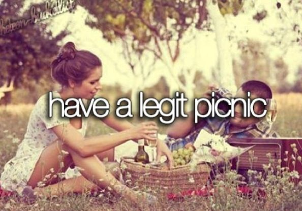 Have a legit picnic   ~Things to do in 2013~