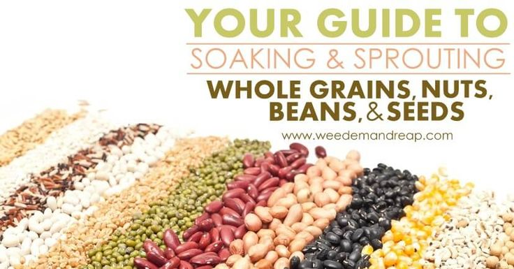 Traditional societies have been doing this for thousands of years because cooking simply isn't enough to break down the anti-nutrients and phytic acid found in grains, beans, nuts, & seeds. https://www.weedemandreap.com/guide-soaking-sprouting-grains/