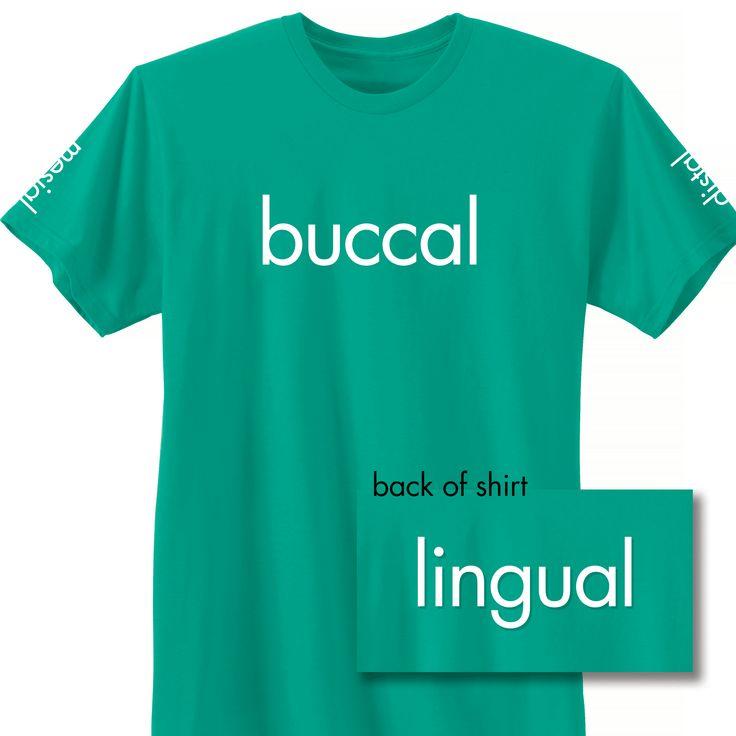 Buccal, distal, mesial, lingual. #dentalhumor #teeth #dentistry