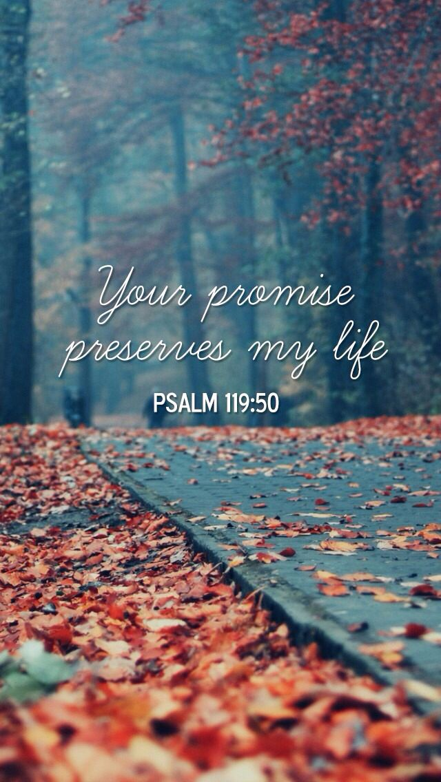 This is my comfort in my affliction, for Your word has given me life. (Psalm…