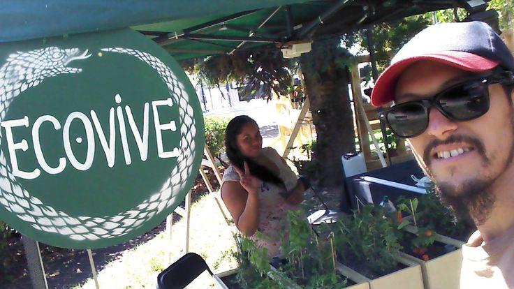 Somos EcoVive. Cristóbal y Pilar. Montaje del stand de Ecovive en la Aldea Verde del Lollapalooza Chile 2015.