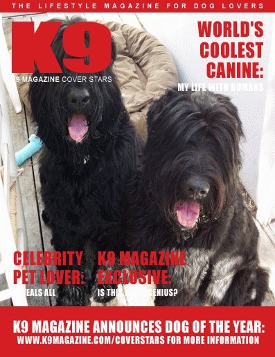 Pasha and Ivan- World's Best Black Russian Terriers