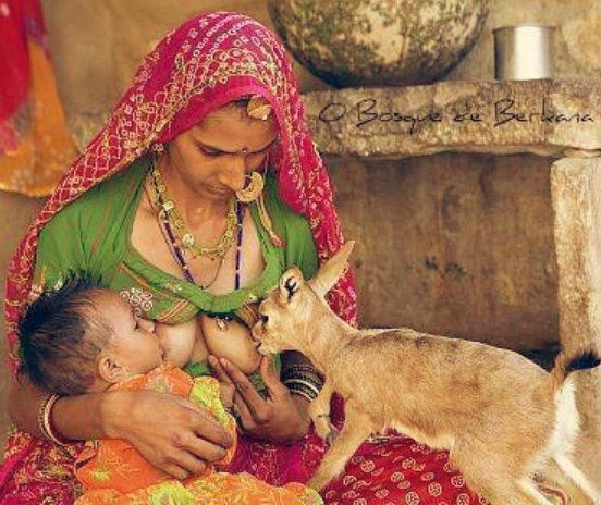 Living in one with naturePhotos, Beats, Milk, Food, Mothers Nature, India, Nurs, World Culture, Animal