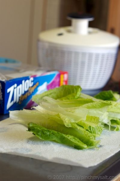 A recipe for keeping lettuce fresh and crisp.  I've already got a long row of lettuce coming up in the garden.