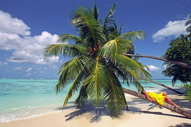 Dreaming of the Caribbean. #summer