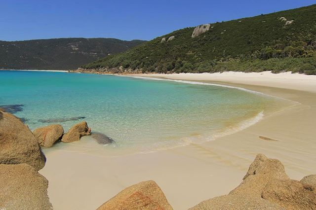 ⠀ ⠀ ::: PRISTINE BEACHES :::⠀ ⠀ Doesn't this make your heart sing?! Little Waterloo Bay on the perfect summer day. Beyond bliss!⠀ ⠀ ⠀ #WilsonsProm #TheProm #VisitWilsonsProm #Mountains #Pristine #Beaches #Ocean #ClearWater #BlueSky #Hiking #HikersGuide #Trekking #Tramping #BushWalking #Camping #OvernightHike #Adventure #Explore #HardWork #Reward #TourismVictoria #VisitVictoria #SeeAustraliahikersguide.com.au