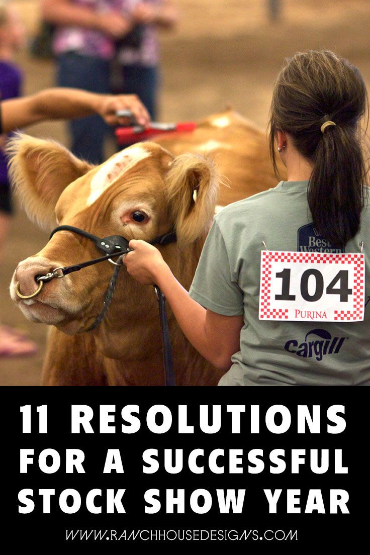 11 Resolutions For A Successful Stock Show Year - The Ranch House Designs Blog