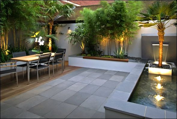This modern garden design features a palm tree floating in a pool and a lush tropical planting design.