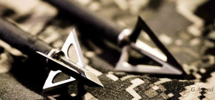 Martin Archery - BFO Photography